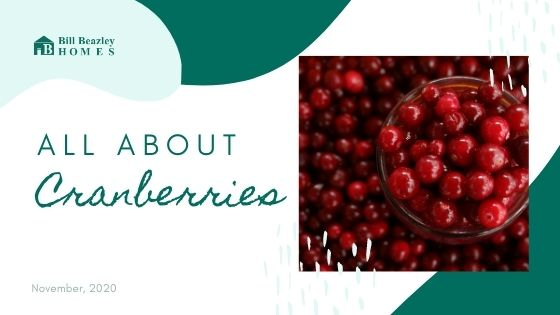All about cranberries banner