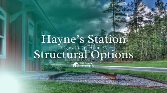 hayne's station structural options banner