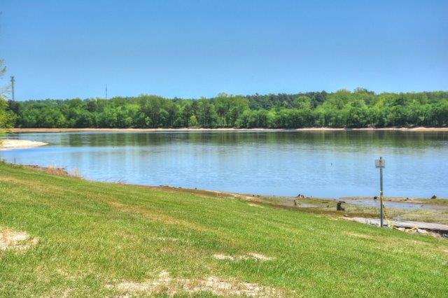 An image of Langley pond.