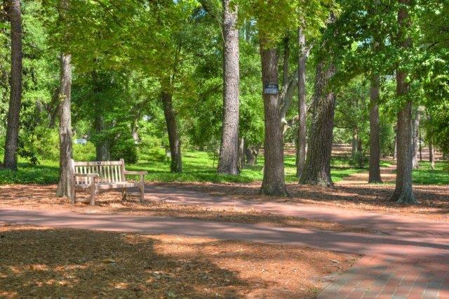 An image of Hopeland Gardens.